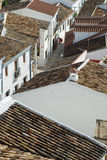 rooftopsspanjortegelplatta Fotografering för Bildbyråer