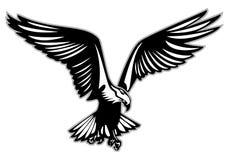Roofvogel tijdens de vlucht vectorillustratie Stock Afbeeldingen