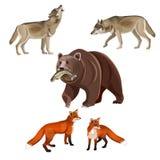 Roofzuchtige dierenvector royalty-vrije illustratie