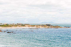 Rooi Els with Cape Point in the distance Royalty Free Stock Photo