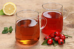 Rooibos和野玫瑰果茶 免版税库存照片