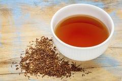 Rooibos红色茶-杯子和活页纸 免版税库存照片