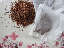 Rooibos. Stock Images