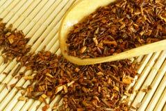 rooibos herbaciani Zdjęcia Stock