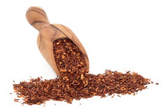 Rooibos Herbal Tea. In an olive wood scoop over white background Stock Photo
