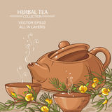 Rooibos herbata w teapot i herbaty pucharach ilustracja wektor