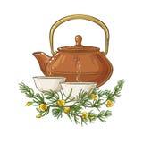 Rooibos herbaty ilustracja ilustracji