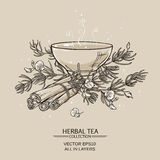 Rooibos. Illustration with tea bowl with rooibos and cinnamon Stock Photos
