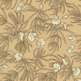 Rooibos seamless pattern Stock Images