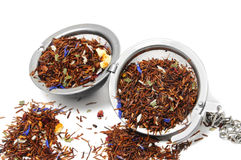 Rooibos tea. In a tea infuser isolated on a white background Royalty Free Stock Photo