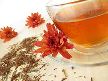 Rooibos tea. Cup of hot rooibos tea Stock Photography