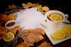 Rooibos tea background Royalty Free Stock Photo