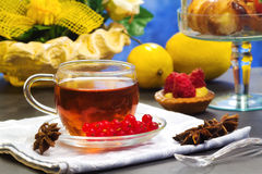 Rooibos tea with fancy cakes Stock Images