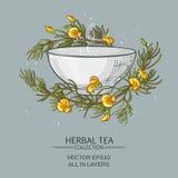 Rooibos tea illustration Stock Photo