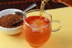 Rooibos tea Royalty Free Stock Photography