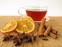Rooibos tea with spices. Cup of rooibos tea with spices Royalty Free Stock Photos