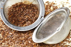 Rooibos tea with tea strainer Stock Photography