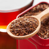 Rooibos in tea tin box closeup. Rooibos in tea tin box and wooden spoon closeup Stock Images