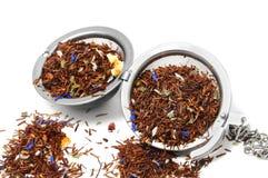 Rooibos Tee Lizenzfreies Stockfoto