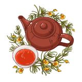 Rooibos teillustration royaltyfri illustrationer