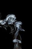 Rook Stock Afbeelding