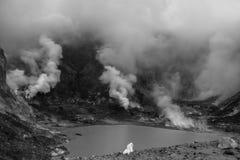 Rook die van een meer in zwart-wit toenemen royalty-vrije stock afbeelding