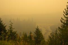 Rook-gevulde vallei dichtbij Rogers-pas, BC stock foto's