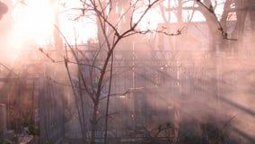 Rook het Branden in een Begraafplaats in Odessa, de Oekraïne stock afbeelding