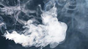 Rook in langzame motie Rook op zwarte Witte Rook stock footage