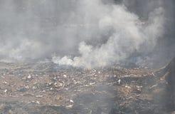 Rook van blad het branden op grond in tuin Stock Foto's