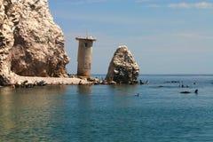 Rookery Roca Consag del leone di mare immagini stock libere da diritti