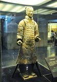 The rookie of the terracotta army. Terracotta Army royalty free stock image