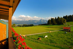 Room with alpine view. View over meadows and Forggensee to the austrian alps royalty free stock images