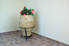 Room decoration: Flowerpot Stock Images