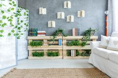 Room full of plants. Spacious white and grey living room full of plants Royalty Free Stock Photography