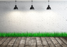 Room with greens grass Royalty Free Stock Photo