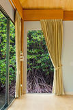 Room at mangrove forest Royalty Free Stock Photo