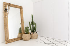Room with mirror and cactus. White room with mirror with wooden frame and decorative cactus Stock Photos