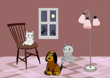 Room at Night with Animals. Stock Images