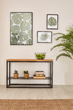 Room with plant motives Stock Image