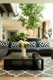 Room with sofa, plants and skylight Stock Photo