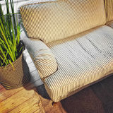Room with striped sofa and plant decoration. Room with comfortable striped sofa and plant decoration Stock Photos