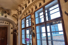 Room for trophies of the hunter. Stock Photos