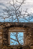 Room with a view. Old building window in Slovenia with a tree Royalty Free Stock Image