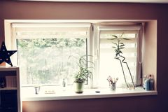 A room window with decoration. A modern room window with decoration, flowers in the pot Stock Images
