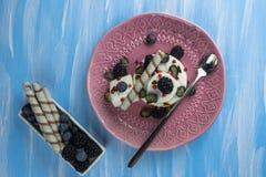 Roomijs met bosbessen, braambessen en banketbakkerij een verfrissend dessert op een plaat royalty-vrije stock afbeelding