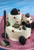 Roomijs met bosbessen, braambessen en banketbakkerij een verfrissend dessert op een plaat royalty-vrije stock afbeeldingen