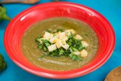 roomsoep, broccoli, aubergine, courgette in een rode plaat, met olijfolie, peterselie, kaas stock afbeelding