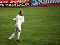 Rooney Imagem de Stock