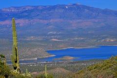 Roosevelt湖景色 免版税库存图片